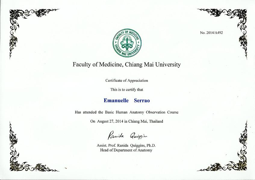 Certificato Facoltà di Medicina Chiang Mai University